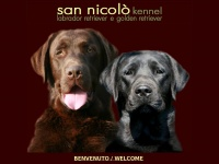 Labrador e Golden Retriever Allevamento San Nicolò - Index