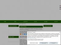 A.S.D. Caraglio Calcio