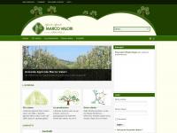 Azienda Agricola Marco Valori - Vivai Olivi - Massa Marittima - Toscana